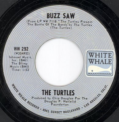 turtlesbuzzsaw